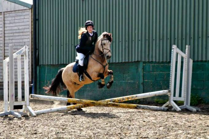 beano show jumping