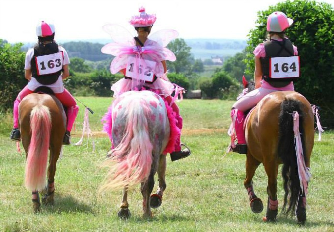 Canter for a Cure 2014