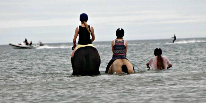 The trio in the sea