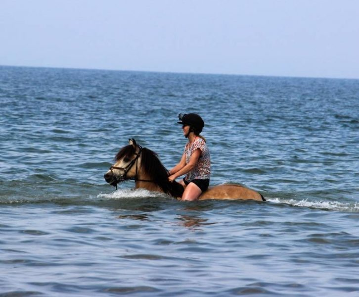 girl riding a swimming horse in the sea at holkham beach