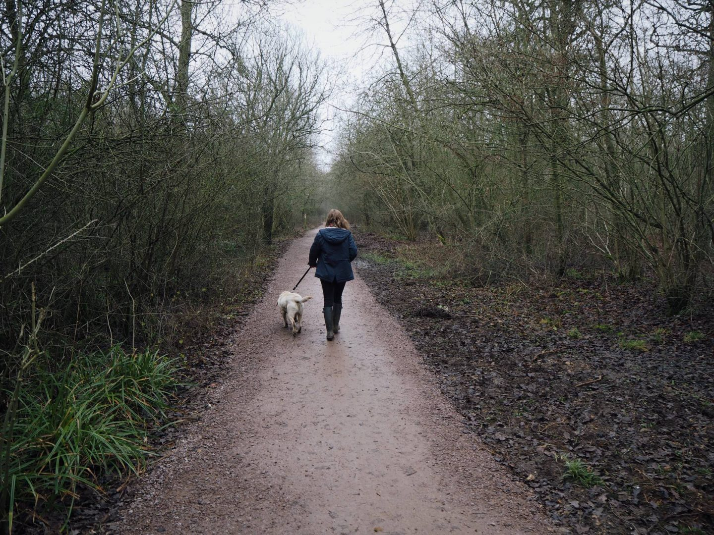 Girl walking away with a dog in Salcey Forest, Northamptonshire