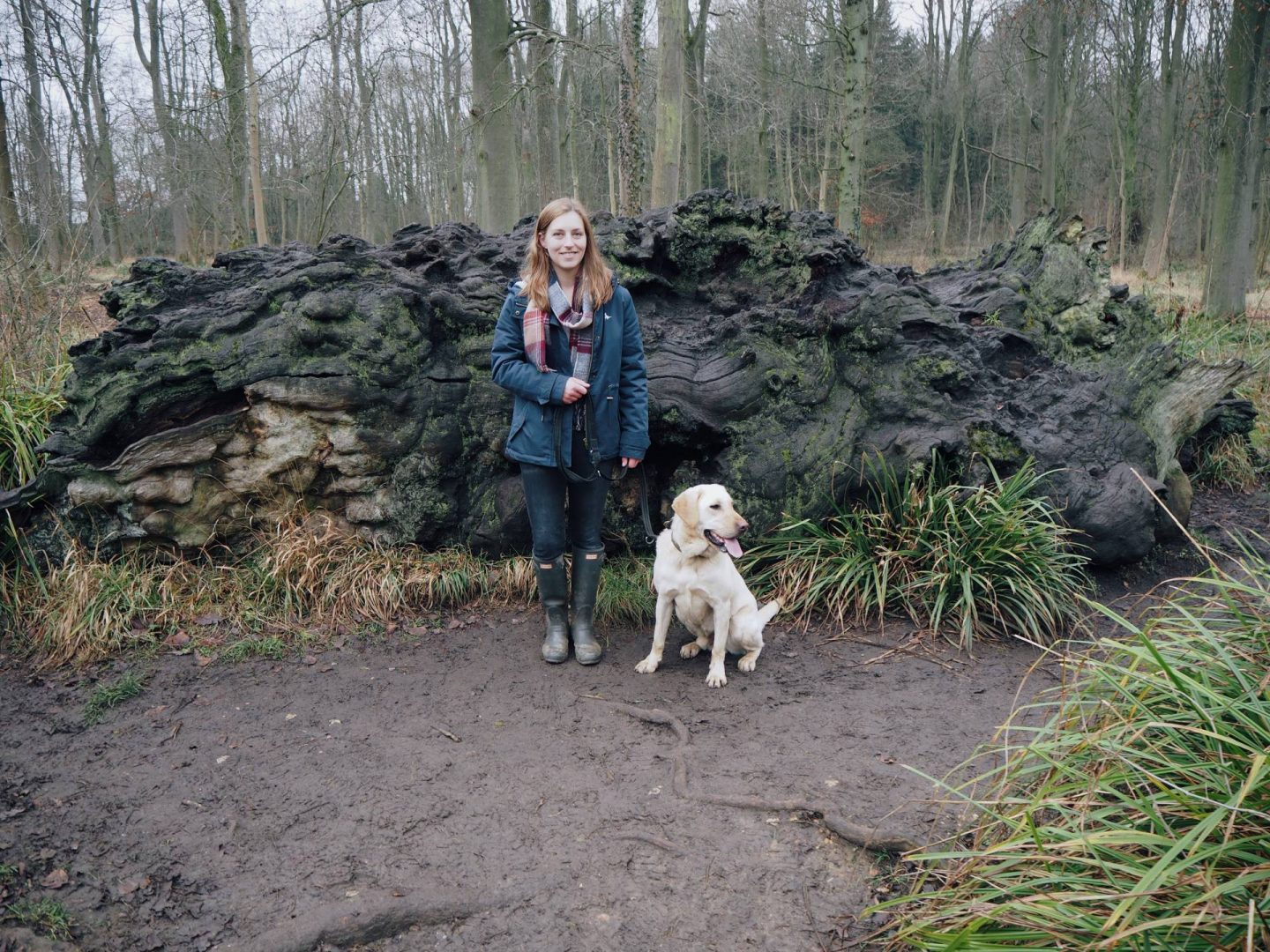 Blonde girl walking a dog in Salcey Forest, Northamptonshire