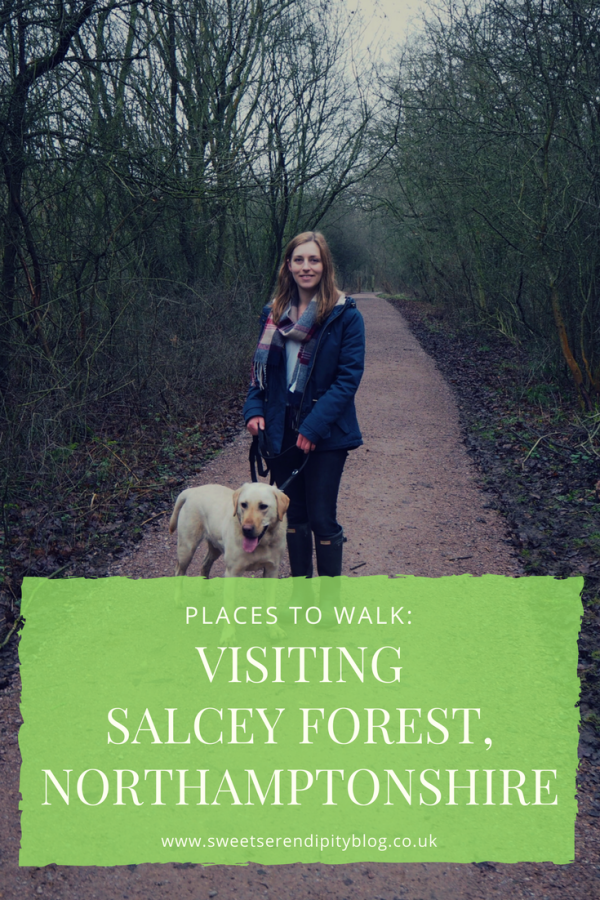 salcey forest pinterest photo