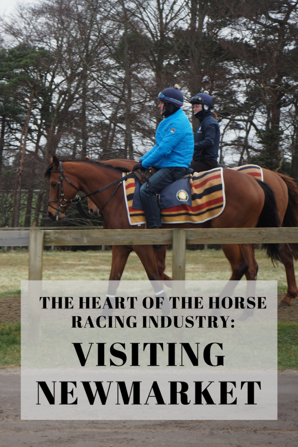 The heart of British Horseracing: A Guide To Newmarket's Best Attractions