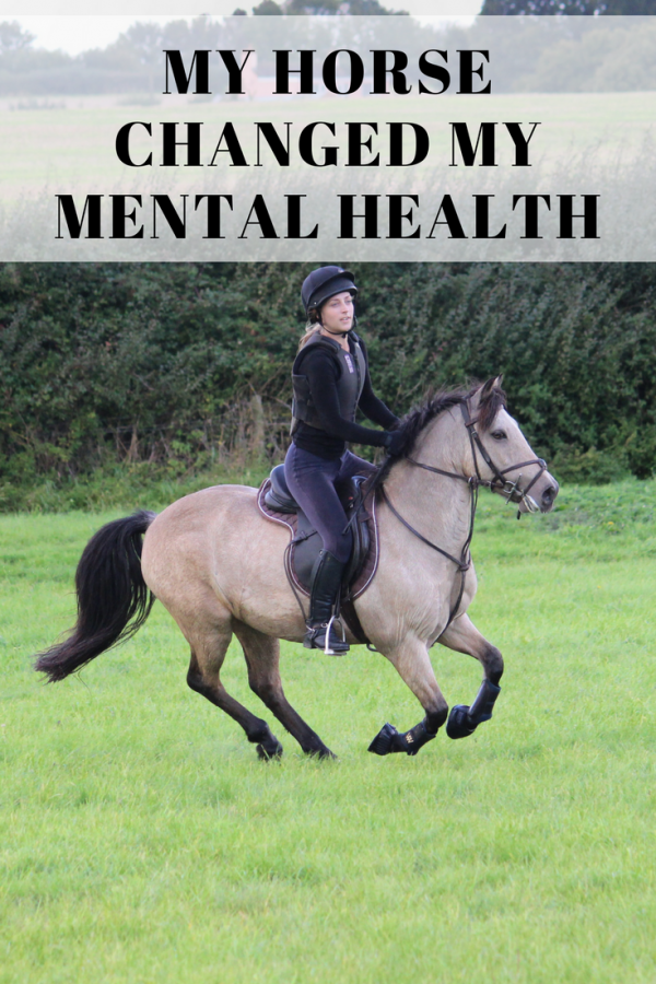 My horse changed my life, and my mental health