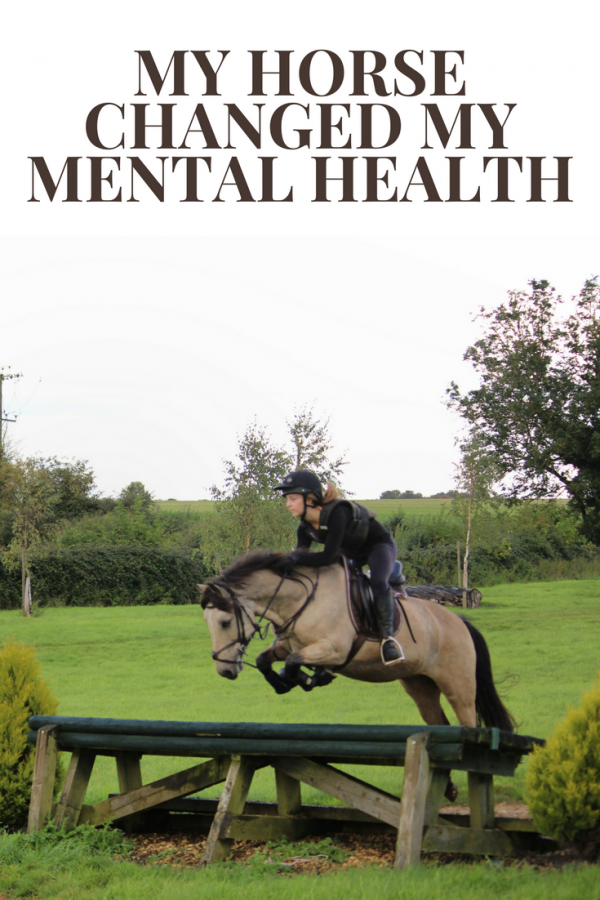 My horse altered my mental health, for the better