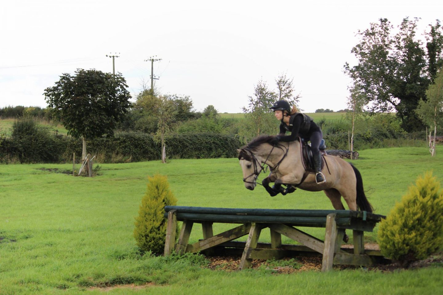 pony jumping a table out on a cross country course