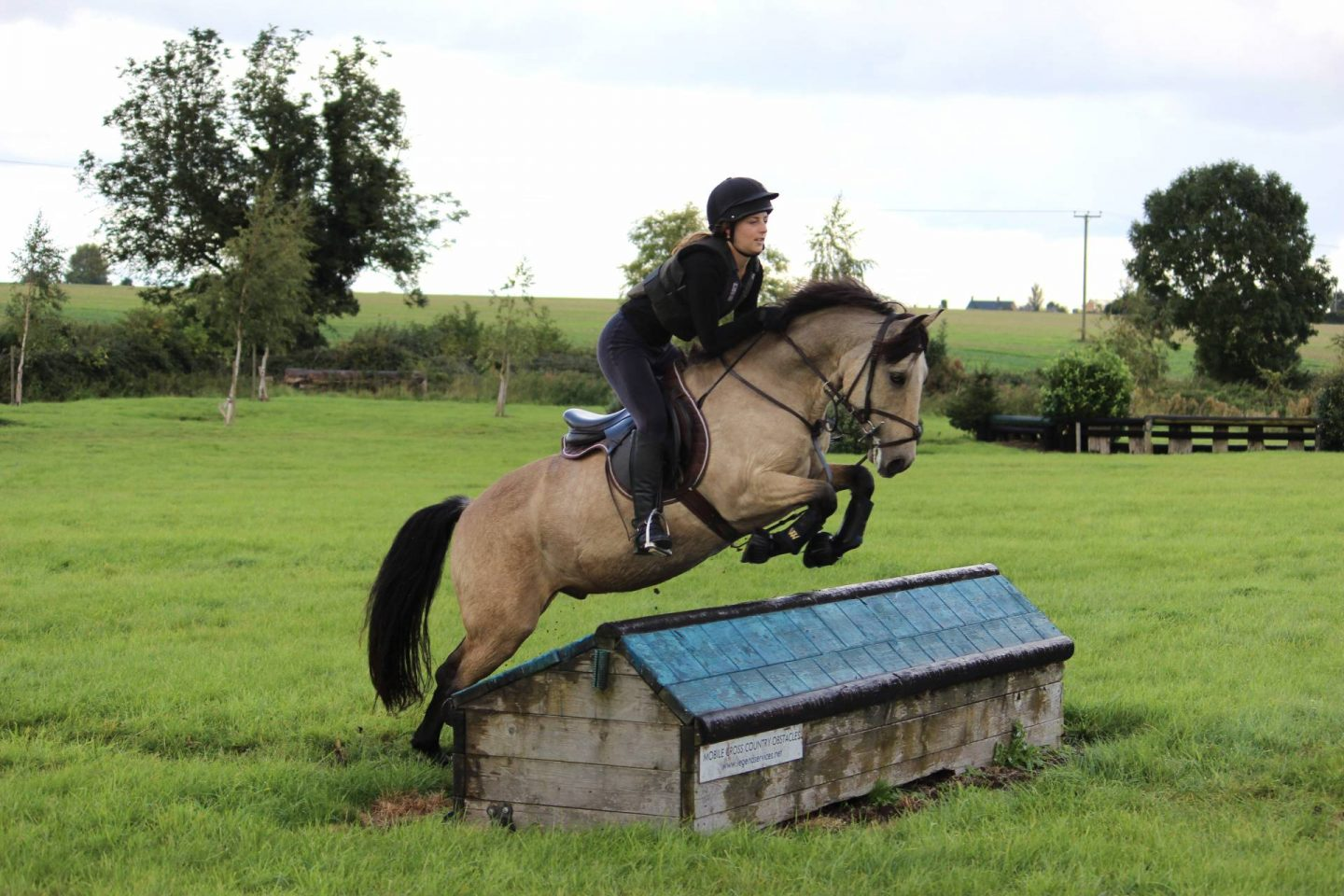 pony jumping over house on cross country course