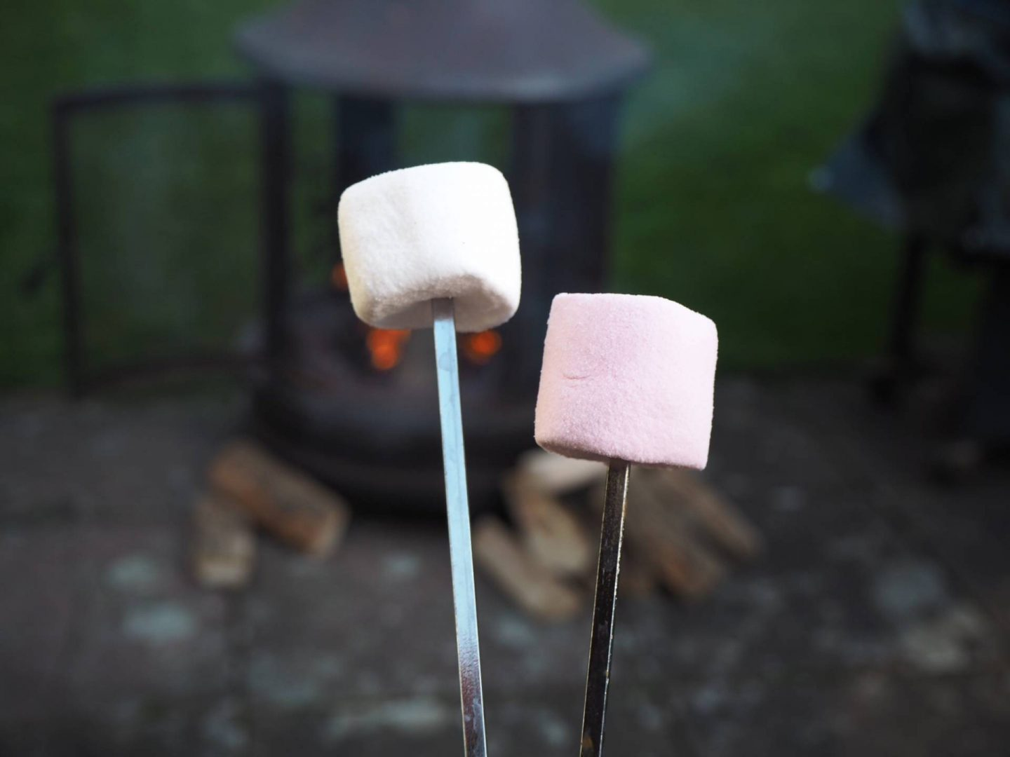Marshmallows toasting on cosy outdoor fire