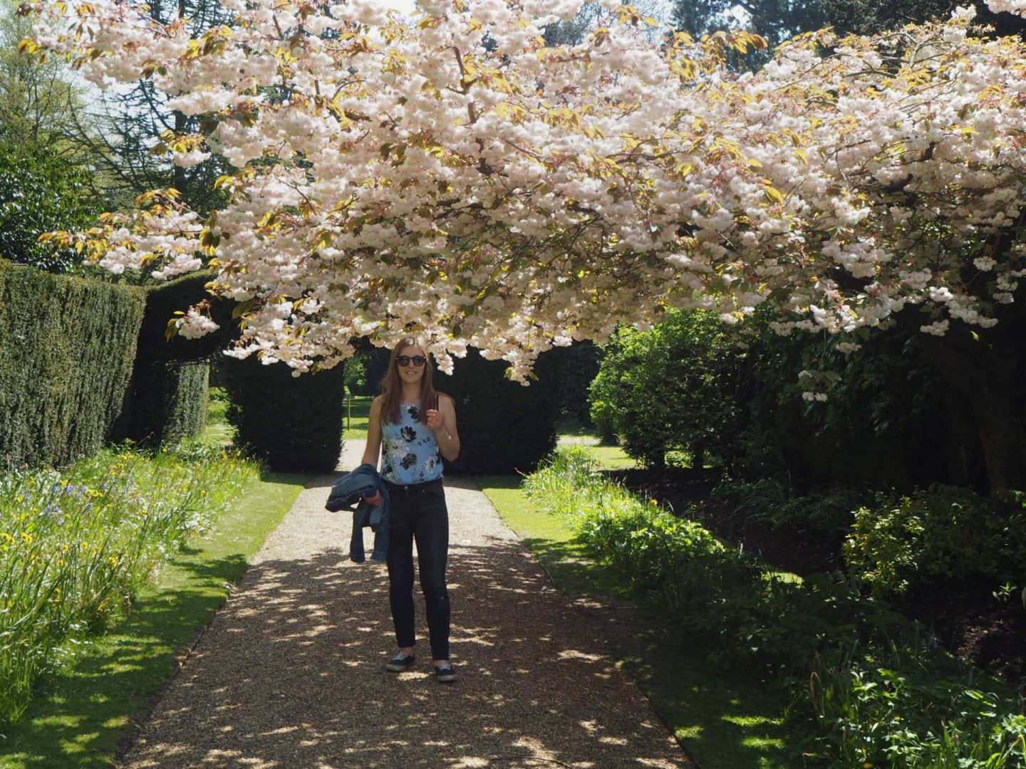 Girl under a blossom tree in Castle Ashby Gardens