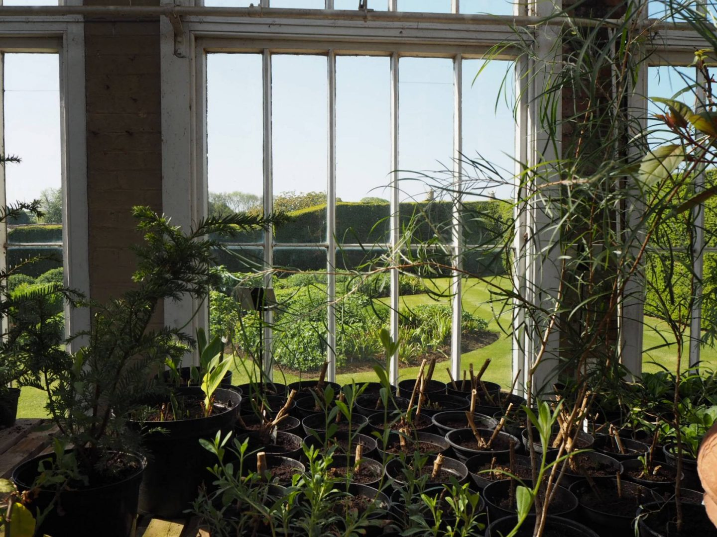 View out from greenhouse at Castle Ashby