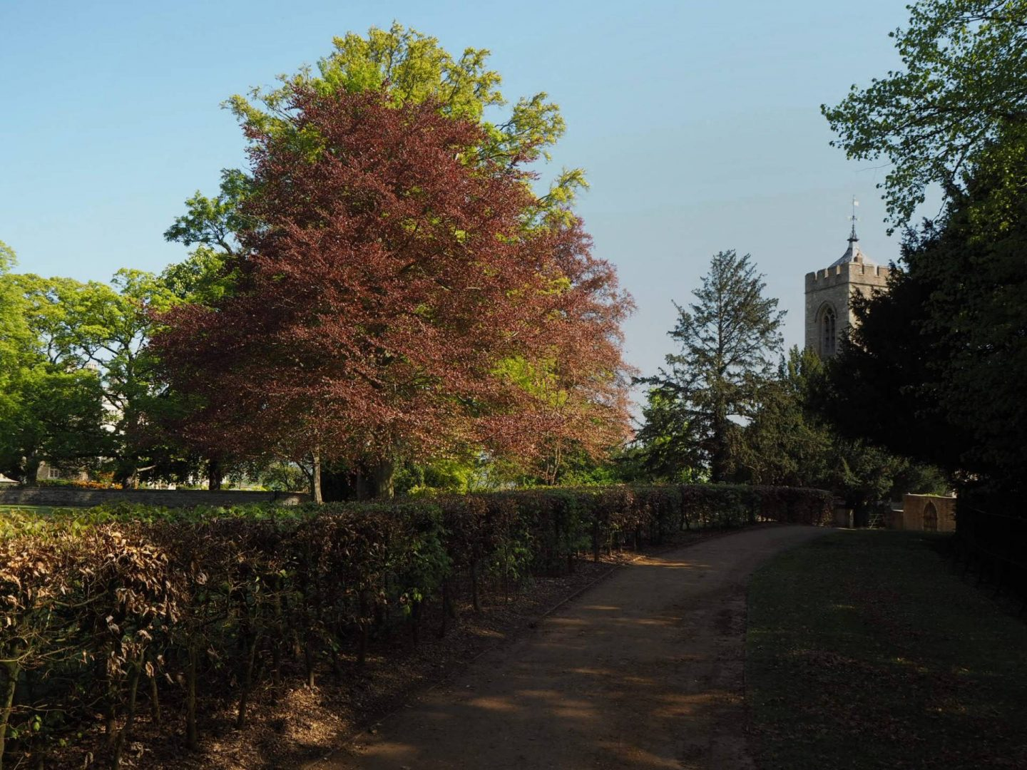 Walking around the gardens at Castle Ashby