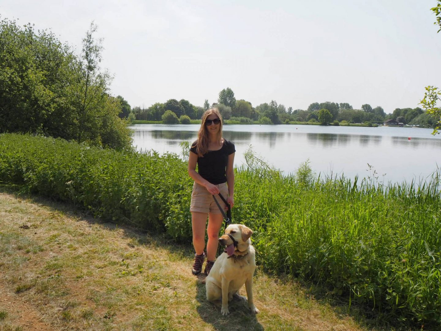 dog walking at emberton country park