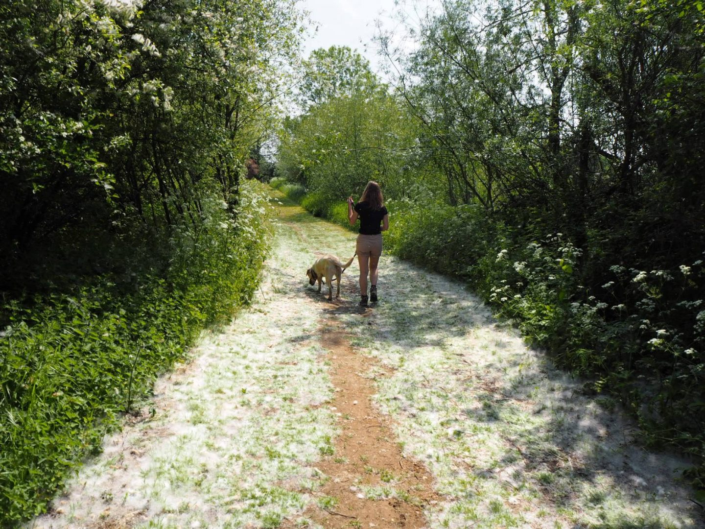 girl and dog at Emberton Country Park in Buckinghamshire