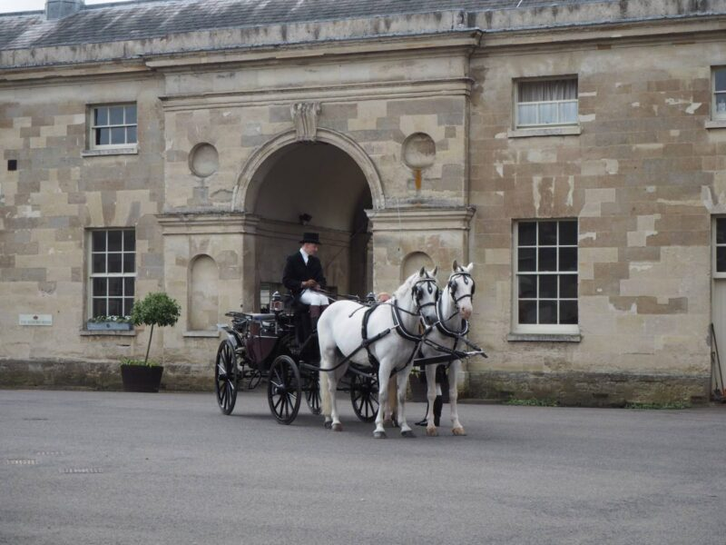 Tour of Woburn Abbey in a horse and carriage