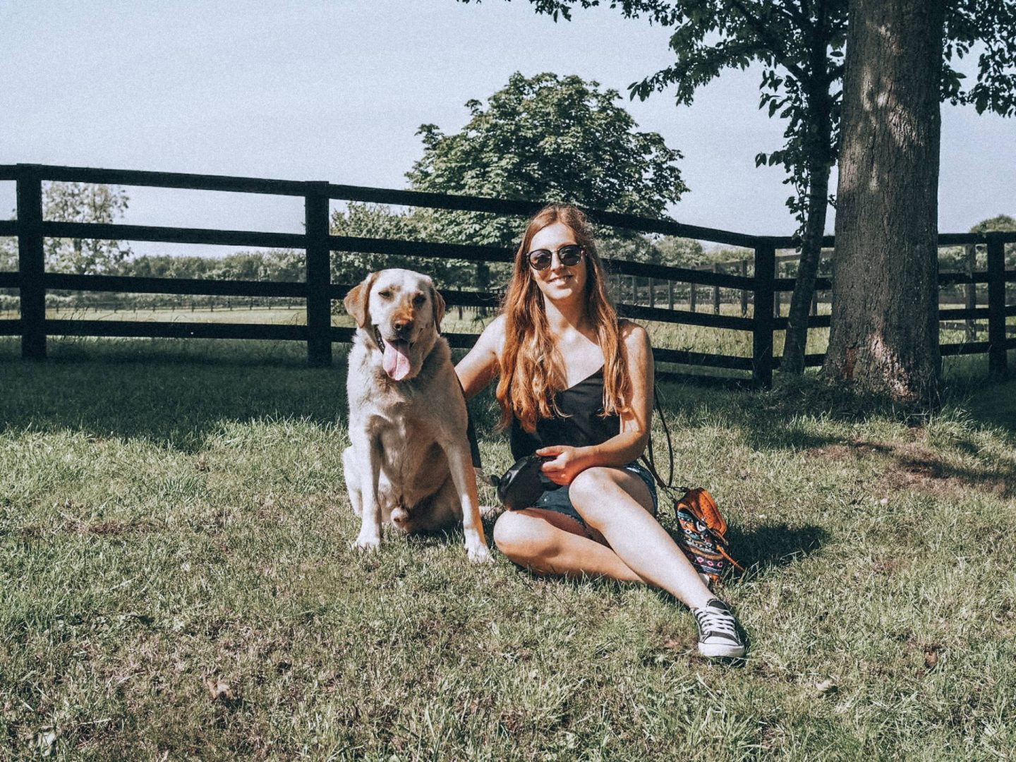 Girl sitting under a tree with a yellow labrador