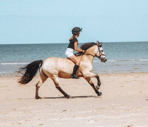 Cantering bareback on Holkham Beach in Norfolk