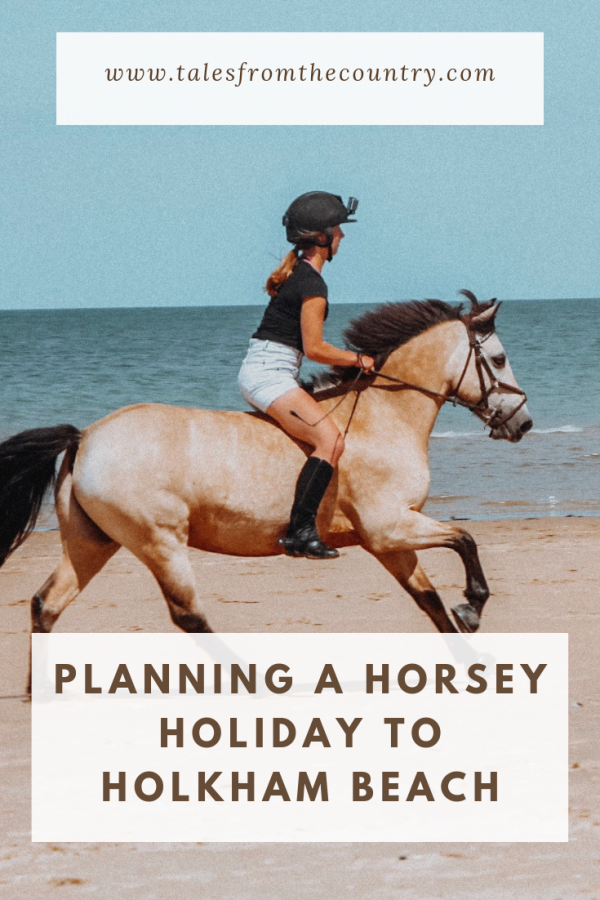 Planning a horsey holiday to Holkham Beach in Norfolk
