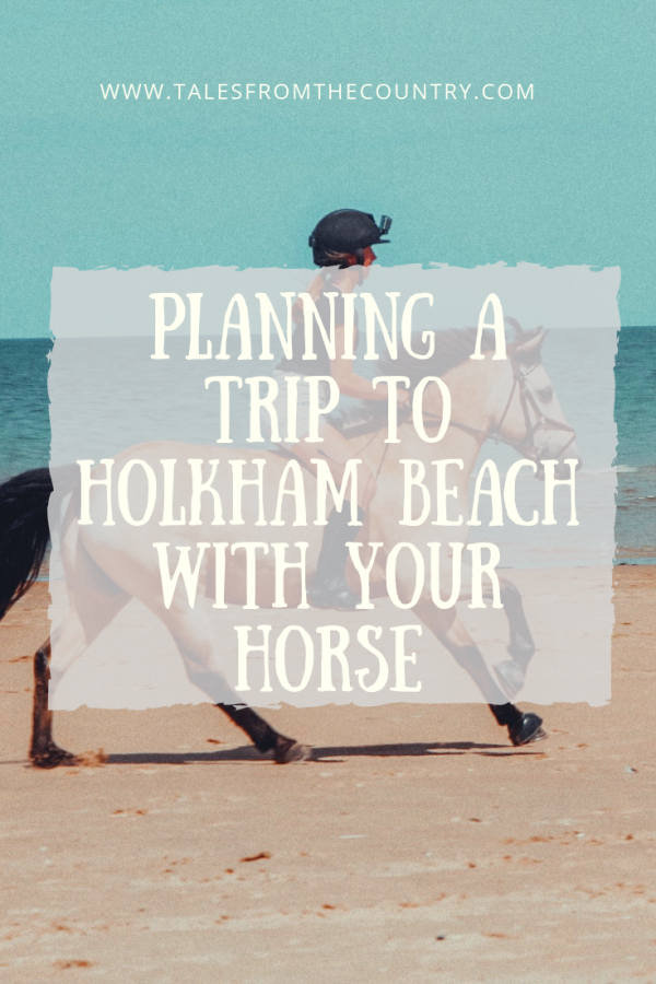 Planning a trip to Holkham Beach in Norfolk with your horse
