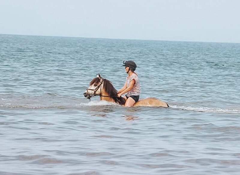 Swimming in the sea on a horse