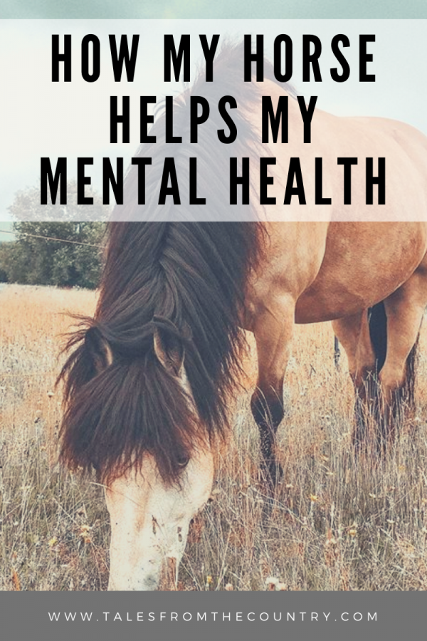 How my horse helps my mental health