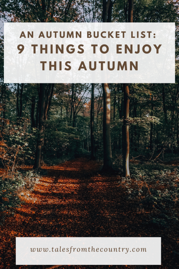 Nine things to look forward to this autumn