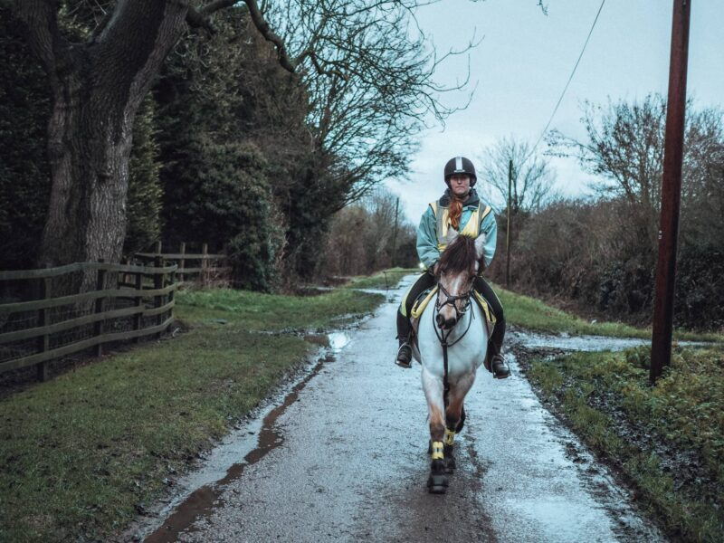 Horse and rider on the roads - safety awareness