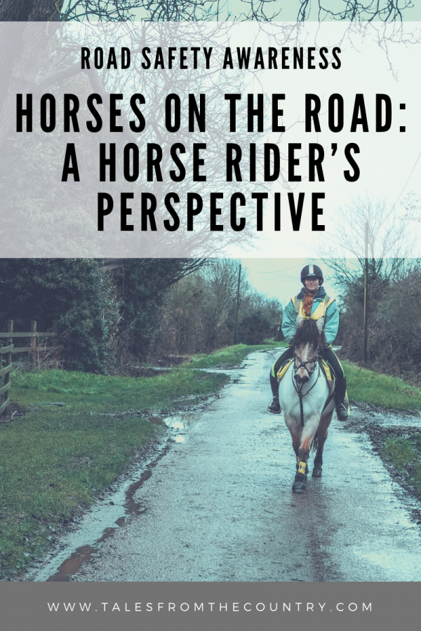 Road safety awareness: Horses on the road - A horse rider's perspective