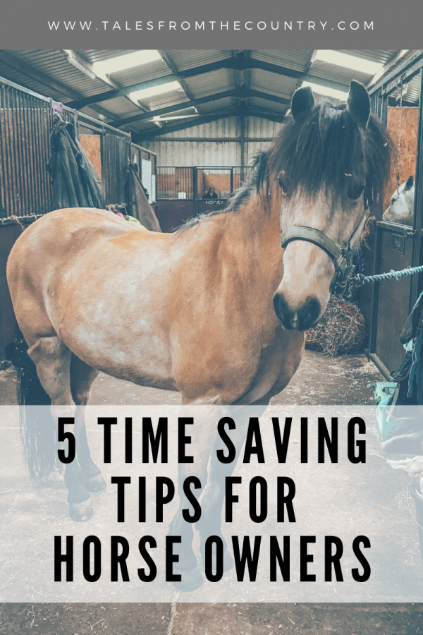 5 time saving tips for horse owners in winter