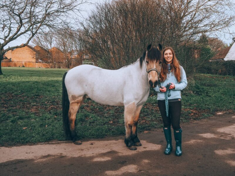 Horse rider wearing Hunter wellies with a dun pony stood next to her in hand
