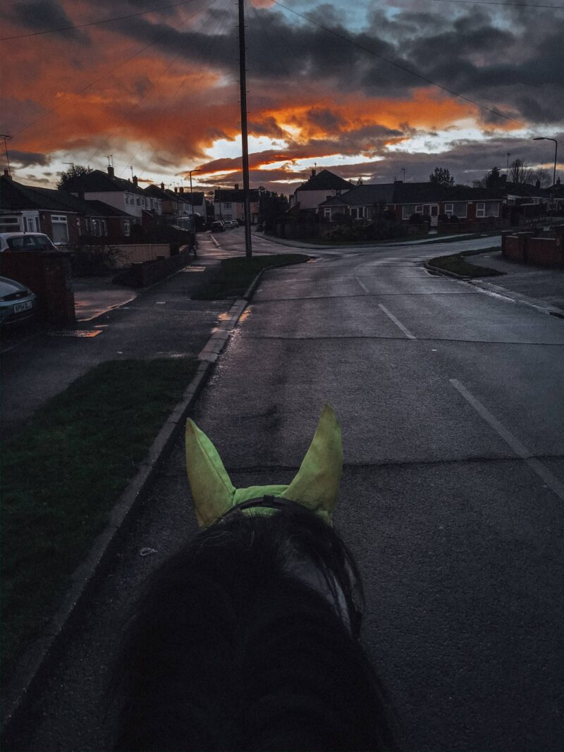 Horse riding after work