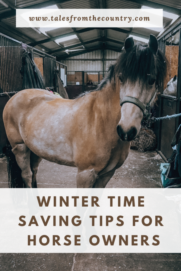 Winter time saving tips for horse owners