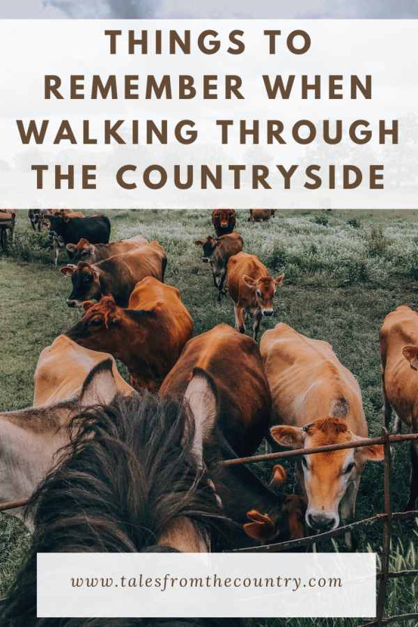Things to remember when walking through the countryside