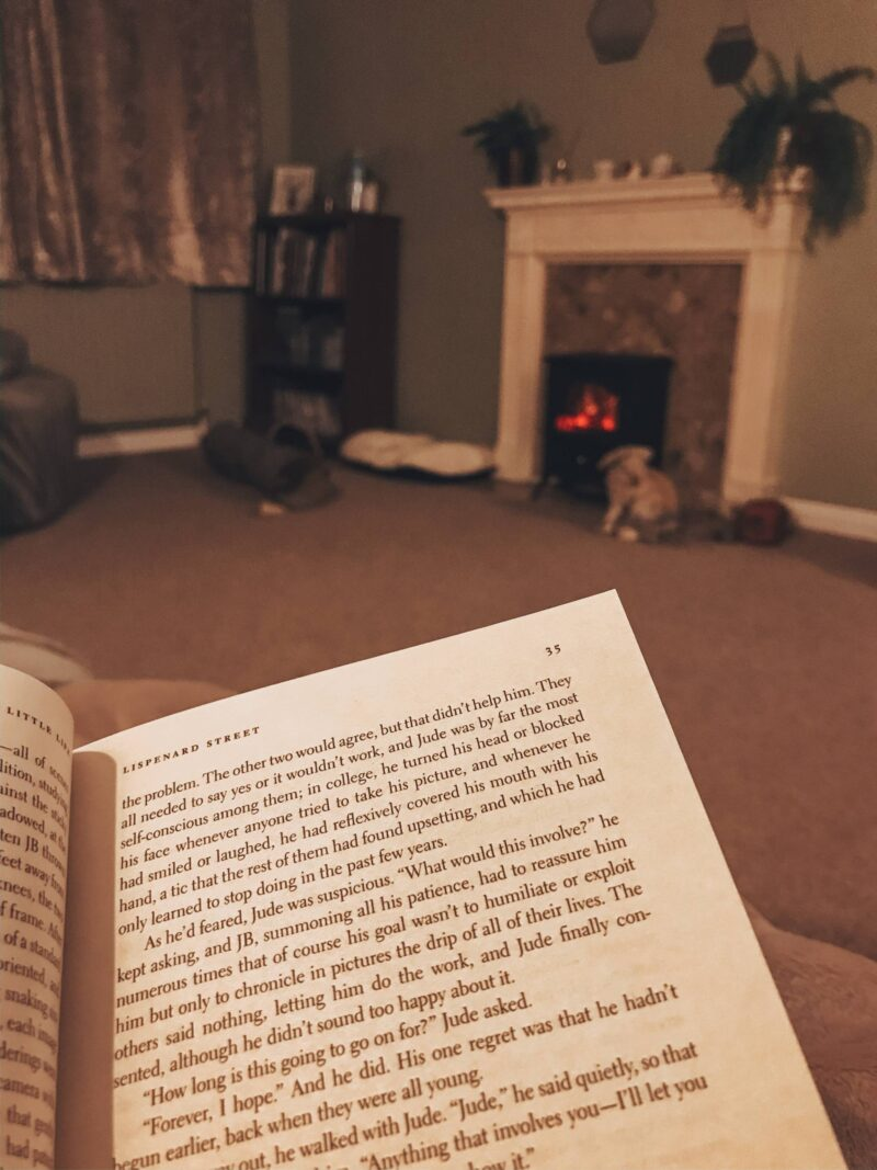Reading inside a country home with a fire roaring in the background