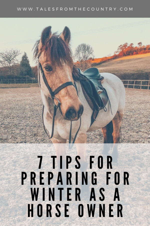 7 tips for preparing for winter as a horse owner