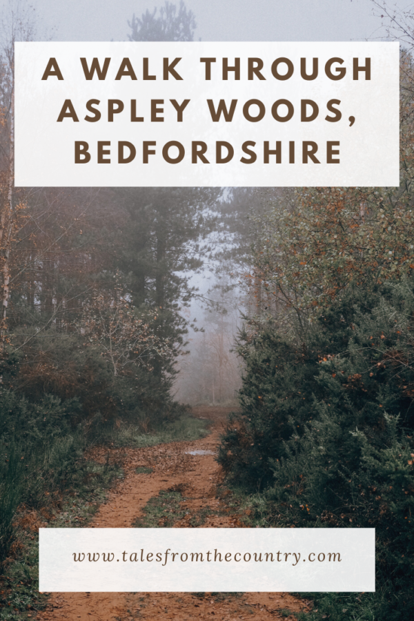 A walk through Aspley Woods in Bedfordshire