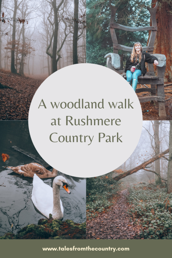 A woodland walk at Rushmere Country Park