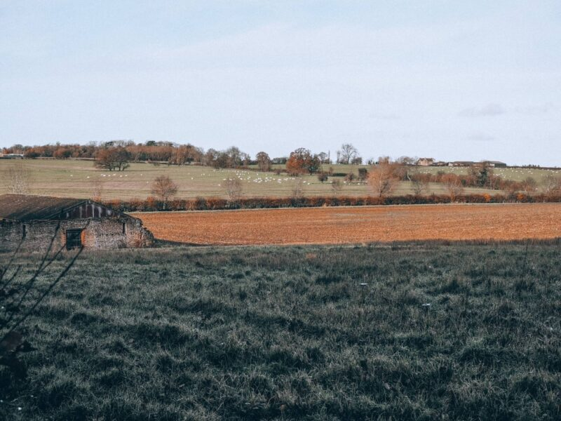 View of fields from Little Linford Woods