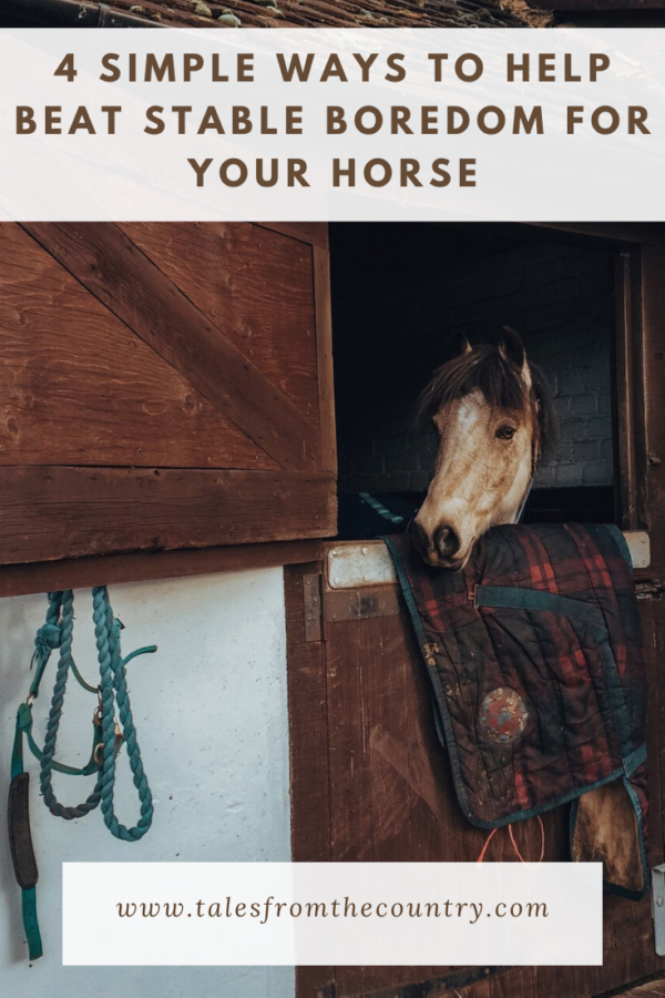 4 simple ways to help beat stable boredom for your horse