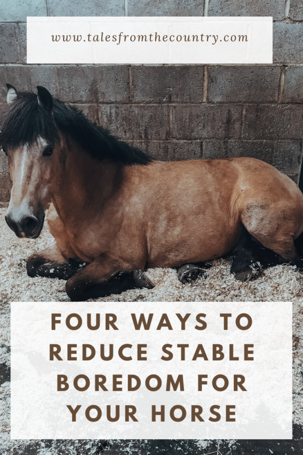 Four ways to reduce stable boredom for your horse
