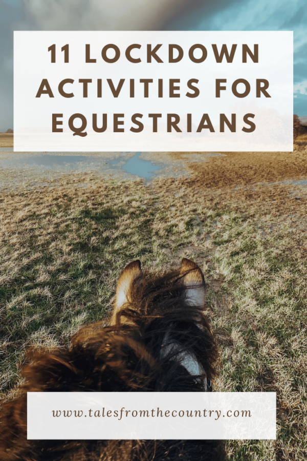 11 lockdown activities for equestrians