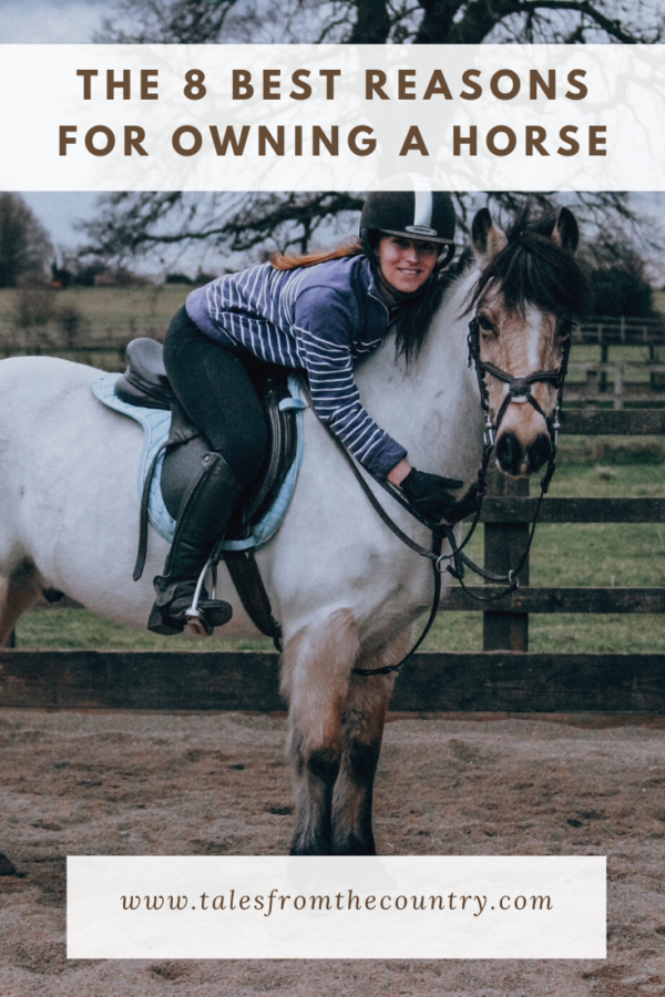 The 8 best reasons for owning a horse