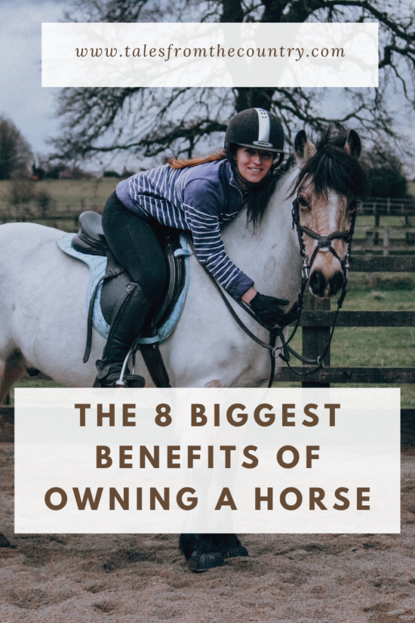 The 8 biggest benefits of owning a horse