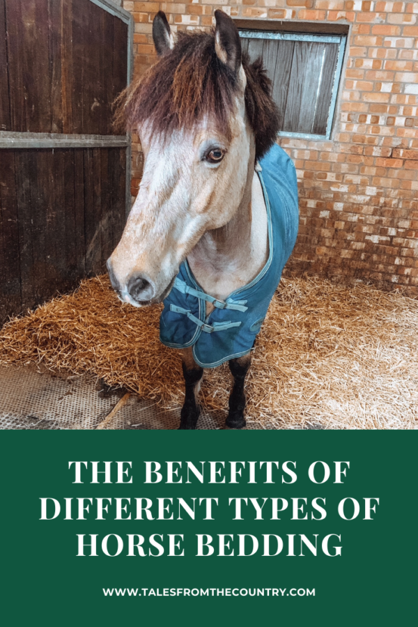 The benefits of different types of horse bedding