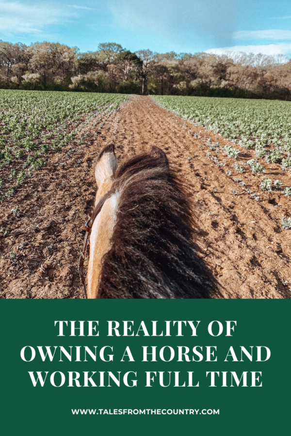 The reality of owning a horse and working full time