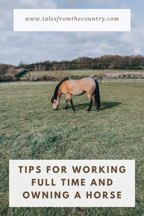 Tips for working full time and owning a horse