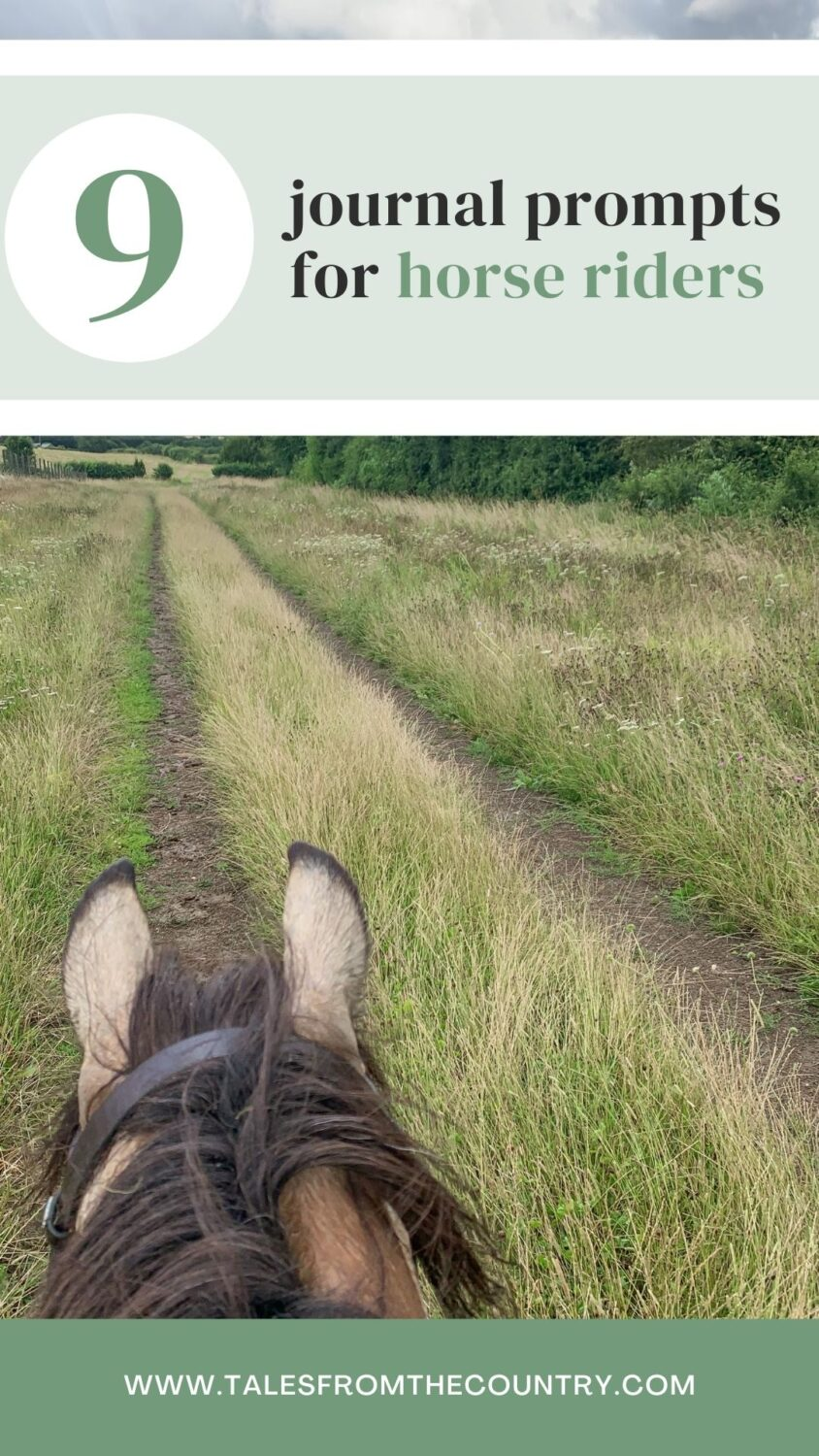 9 journaling ideas for horse riders
