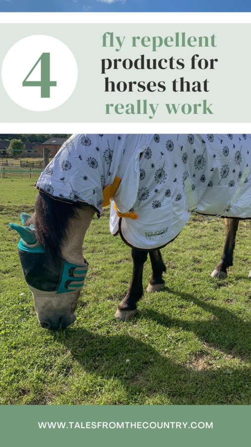 The 4 fly repellent products for horses that really work