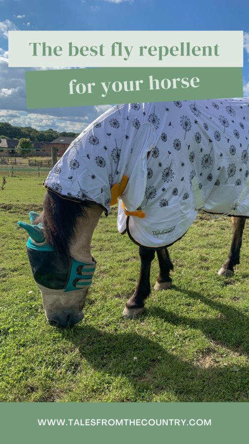 The best fly repellent products for your horse